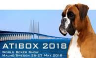 ati-box-2018